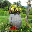 130x130 sq 1395849203286 rustic sunflowers on wine barrels lr