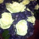 130x130 sq 1340658912191 weddingpicsfromphone948