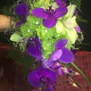 130x130 sq 1342492154683 greenpurpleweddingbouquet