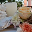 130x130 sq 1332628658607 coralshellsrosesbeachthemedweddingdecor