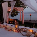 130x130 sq 1332628907873 pinkandwhiteweddinghawaiianweddings
