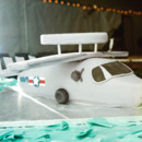 Replica aircraft as flown by the groom!