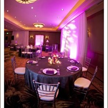 Signature Event Rentals Event Rentals Tampa Fl