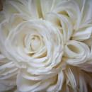 130x130 sq 1419920637659 chgo flower chgo wedding