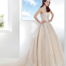 Ultra Sophisticates Style 1467 Venice lace over Tulle, Strapless wedding gown with a full A-line skirt. This bridal dress has a Chapel length train.