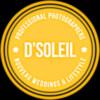 130x130 sq 1367613115543 2013 dsoleil logo small