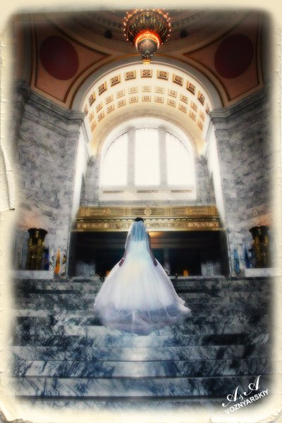 photo 8 of Fairy Wedding Album - Voznarski