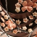 130x130_sq_1303842993514-cherryblossom