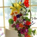 130x130_sq_1303843212405-summergarden