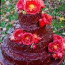 130x130 sq 1457276464247 chocolate rose