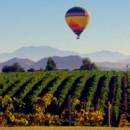 130x130 sq 1455228903313 morning vineyards