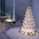 130x130 sq 1237934419337 cake