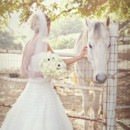 130x130 sq 1382650425928 stephanie and cappy by leah vis