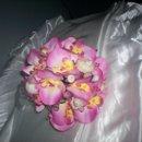 130x130_sq_1238276369642-pink001