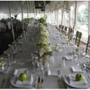 130x130 sq 1313610072095 greenwedding6