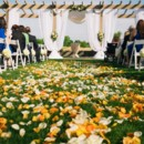 130x130 sq 1456764096059 outdoor wedding