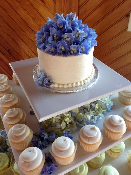 Cake Pops Chesapeake Va