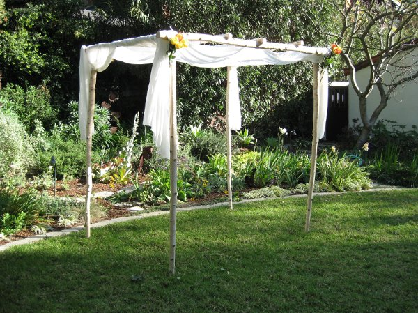 photo 39 of Happily Ever Chuppah