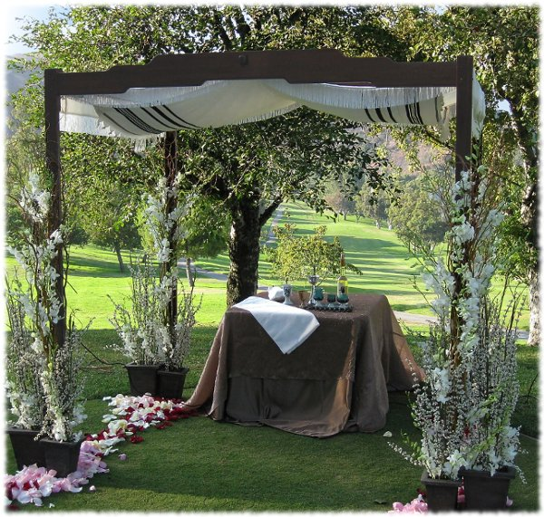 photo 4 of Happily Ever Chuppah