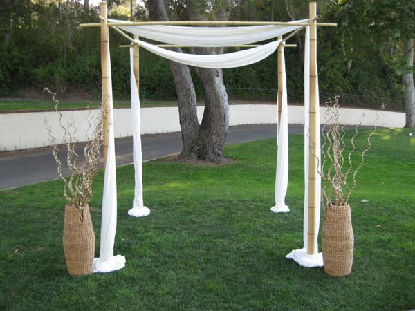 photo 33 of Happily Ever Chuppah