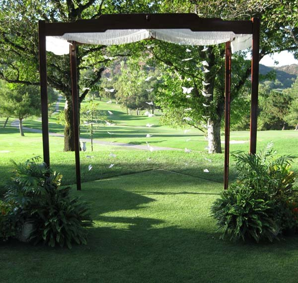 photo 23 of Happily Ever Chuppah