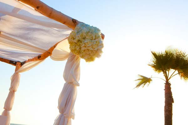 photo 45 of Happily Ever Chuppah