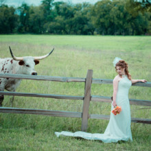 220x220 sq 1427307814811 bride ranch longhorn wedding venue