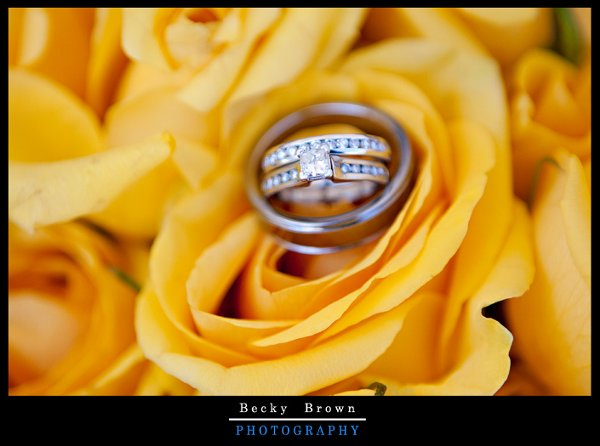 photo 52 of Becky Brown Photography
