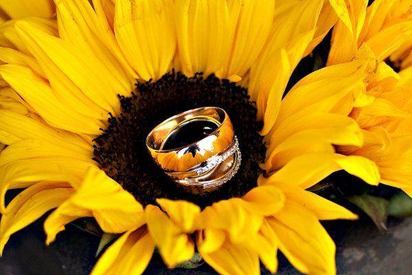 Celebrations Events Amp Weddings Reviews Albuquerque Nm