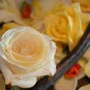130x130_sq_1249324772497-flowercloseup