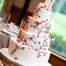 130x130_sq_1268581635001-cake2