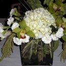 130x130 sq 1239907127953 flowersandfriends005