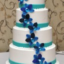 130x130 sq 1409175513879 blue orchid cake