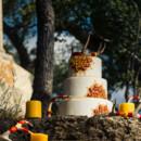 130x130 sq 1472441185809 serengetti cake3