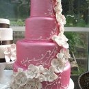 130x130 sq 1296533727860 cakephotosvictoria836