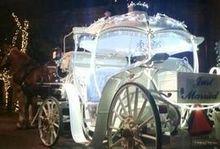220x220 1475200078 7cea33ed28ae04de small pearl wedding carriage