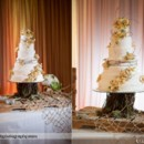 130x130 sq 1428574714954 the cake   copy