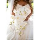 130x130 sq 1469436699843 16 dorado beach ritz carlton reserve wedding chris