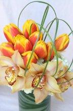 220x220 1241472548139 pdrflowers056