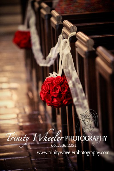 photo 66 of Trinity Wheeler Photography