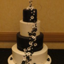 130x130 sq 1378194642726 black ivory wedding cake double tree hilton