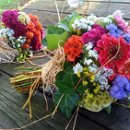 130x130 sq 1335828601852 ecofriendlybouquets2