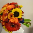 130x130 sq 1455374701365 sunflower orange circus rose red gerbera orange pe