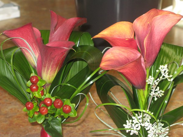 photo 24 of Jewel Tones Flowers