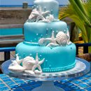 130x130_sq_1271550522694-beachseashellweddingcakebackground