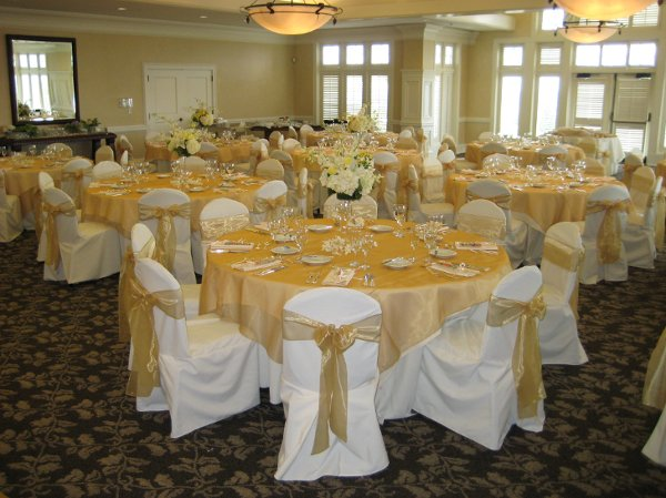 photo 3 of L&M Chair Covers