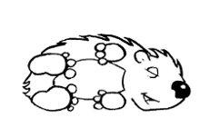 220x220 1245256971416 justhedgehog