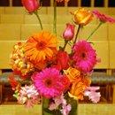 130x130_sq_1270956236873-pinkandorangeceremony