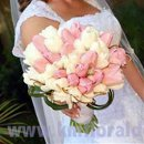 130x130 sq 1270956242045 pinkandwhitetulipsweddingbouquet