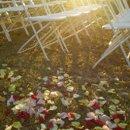 130x130 sq 1273071608249 weddingreceptionplanningcaribbean